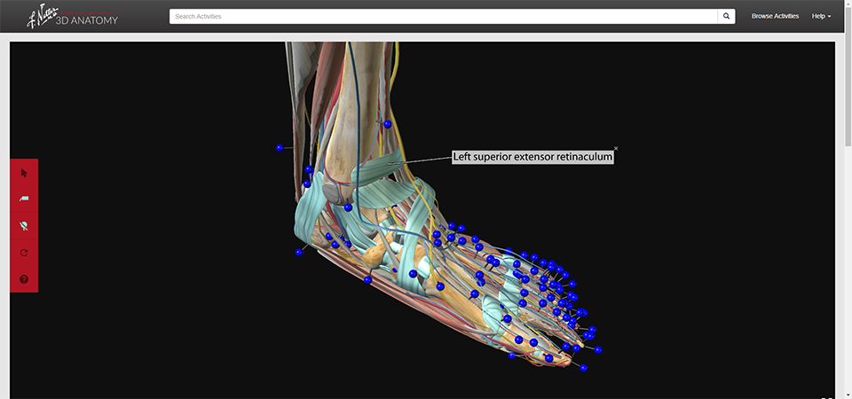 Netter 3D Anatomy | Welcome